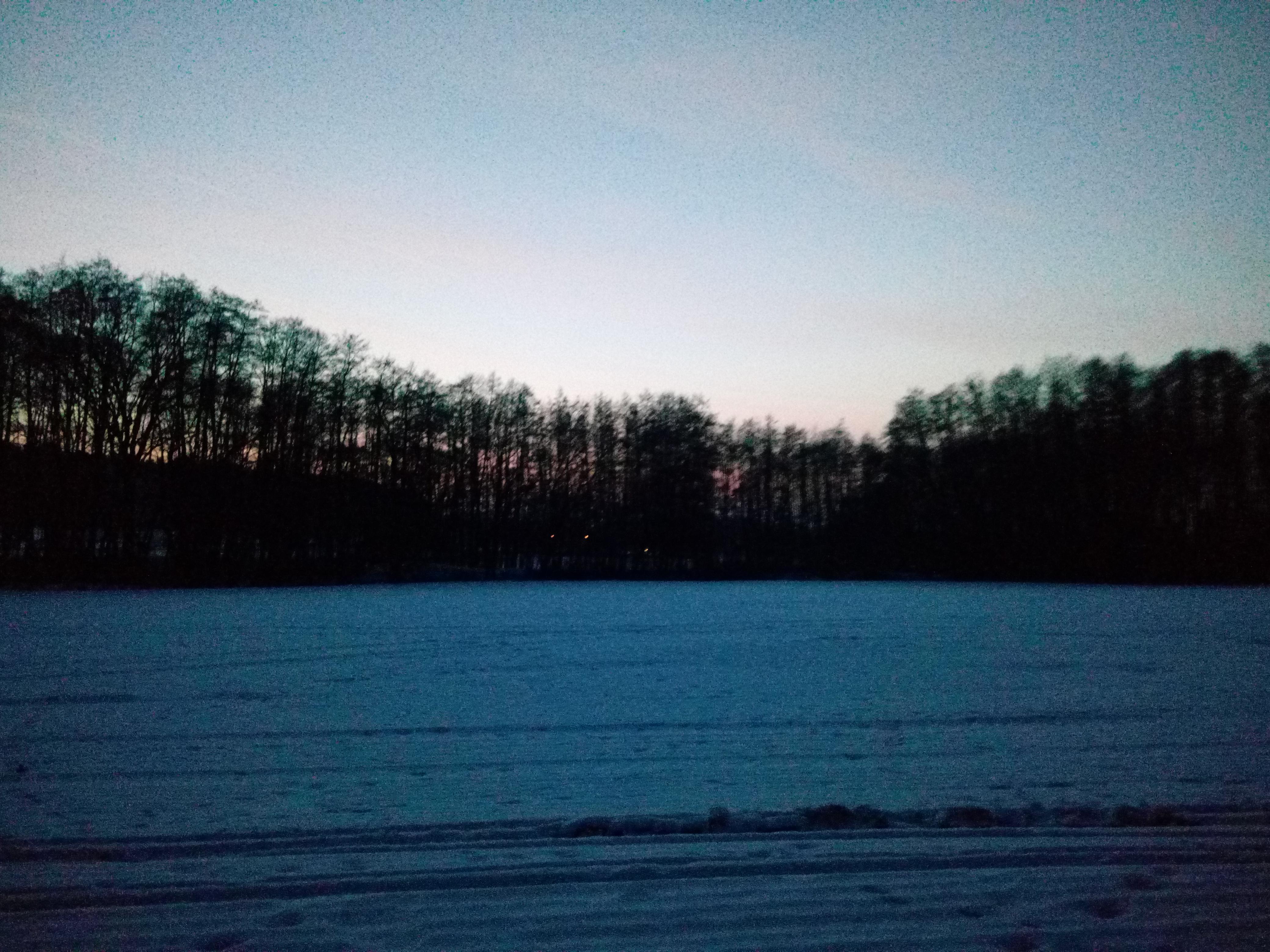 Flugzeuge im Wald im Winter